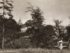 Frognerparken og Frogner hovedgård i 1918. (Ukjent fotograf. Oslo museum)
